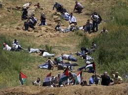 Sending Palestinians directly into the line of fire.